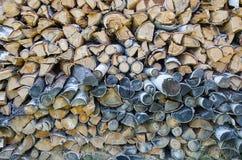 被切开的桦树日志背景  免版税库存照片