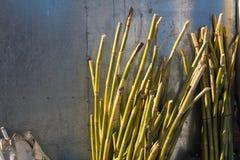 被切开的竹词根在商店 库存图片