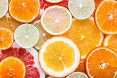 被切的柑橘:桔子,普通话,柠檬,石灰,糖果,葡萄柚,巫婆的扫帚特写镜头宏指令 库存照片
