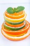 被切的柑橘:桔子,普通话,柠檬,石灰,糖果,葡萄柚,巫婆的扫帚特写镜头宏指令 免版税库存照片