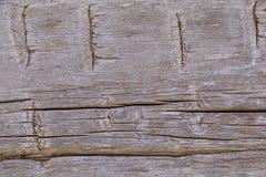 被刻凹痕的19世纪客舱木头背景 库存图片