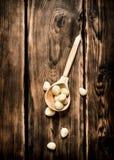 被剥皮的大蒜在一把木匙子的 免版税库存图片