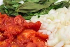 被剥皮的蕃茄、葱和蓬蒿 免版税图库摄影