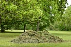 被割的干草堆 库存图片
