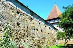 被加强的中世纪撒克逊人的教会在Cinsor-Kleinschenk,锡比乌县 免版税图库摄影