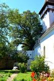 被加强的中世纪撒克逊人的教会在Cinsor-Kleinschenk,锡比乌县 库存图片