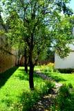 被加强的中世纪撒克逊人的教会的庭院在Cinsor-Kleinschenk,锡比乌县 免版税库存照片