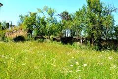 被加强的中世纪撒克逊人的教会的庭院在Rodbav-Rohrbach,锡比乌县,特兰西瓦尼亚 废墟 库存照片