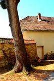 被加强的中世纪撒克逊人的教会的庭院Saschiz & x28的; Keisd& x29; 特兰西瓦尼亚 免版税图库摄影