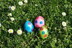 被加点的复活节彩蛋和雏菊花在草草甸 免版税库存图片