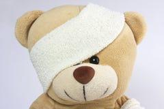 被包扎的熊眼睛题头 免版税库存照片
