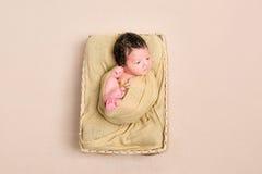 被包裹的黑发婴孩篮子, topview 免版税库存照片