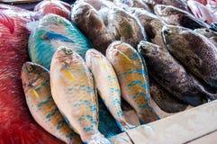 被卖在一个地方鱼市上的鲜鱼 免版税库存照片