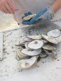 被去外皮的新鲜牡蛎 免版税库存图片