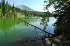 被反射的山在Mountain湖 免版税库存图片