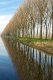 被反射的树在农村富兰德 图库摄影
