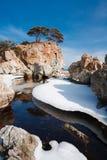 被反射的海岛7 免版税图库摄影