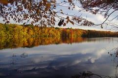 被反射的秋天颜色 库存照片