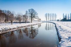 被反射的结构树在一条弯曲的河 库存图片