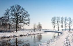 被反射的结构树在一条弯曲的河 免版税图库摄影