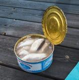 被发酵的鲱鱼- Surstromming 免版税库存照片