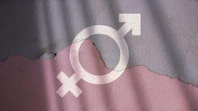 被合并的男性和女性标志 免版税库存照片