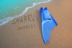 被咬住的危险飞翅鲨鱼 免版税库存照片