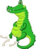 被喂养喜欢的鳄鱼 免版税库存照片