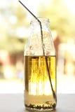 被困住的蚂蚁汁液 图库摄影