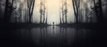被困扰的湖在有人剪影的森林里 免版税库存照片