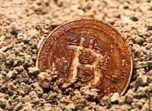 被埋没的生锈的bitcoin 库存图片