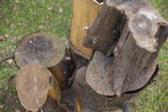 被堆的树桩位子在庭院或公园里 关闭 免版税库存图片