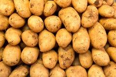 被堆的西班牙土豆 免版税库存照片