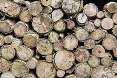 被堆积的日志木为壁炉 免版税库存照片