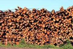 被堆积的木材 免版税库存图片