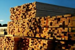 被堆积的木材 免版税库存照片