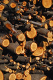 被堆积的木柴 库存照片