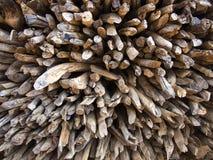 被堆积的木柴 免版税库存图片
