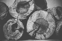 被堆积的木头 库存图片