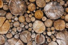被堆积的树干细节 芬兰木材产业 自然后面 图库摄影