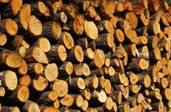 被堆积的橡木木柴特写镜头 免版税图库摄影