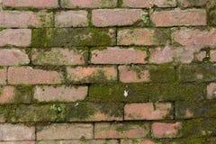 被堆积的生苔砖 免版税库存照片
