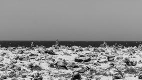 被堆积的石头在Arikok公园 免版税库存图片