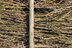 被堆积的草丛 免版税库存图片
