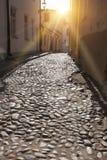 被堆积的路面和印象深刻的墙壁 城市爱沙尼亚大厅老塔林托马斯塔城镇翻板天气 图库摄影