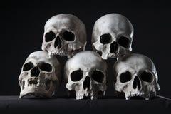 被堆积的头骨 库存照片