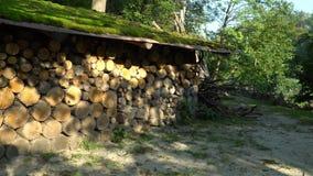 被堆积的firewoods在机盖下 影视素材