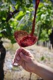 被填装入玻璃的红葡萄酒 图库摄影