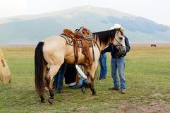 被备鞍的马皮革葡萄酒马鞍 在意大利的山中 Castelluccio 免版税库存照片