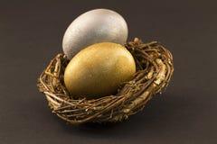 被多样化的蛋嵌套 免版税库存图片